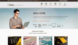 celestino_website-template